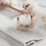 How Eco-Friendly is Cotton